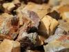 sulphide mineralisation